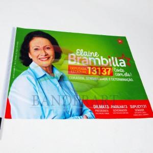 Bandeira Elaine Brambilla