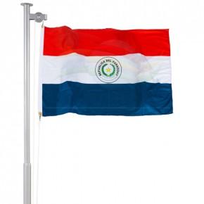 Bandeiras do Paraguai frente